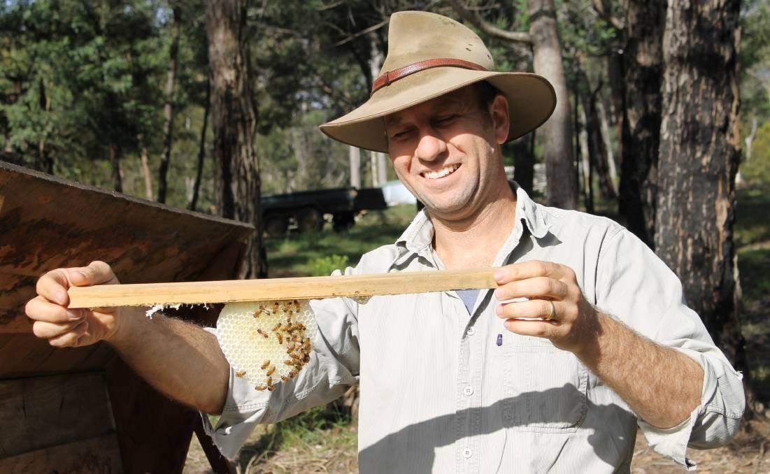'Natural' beekeeping with Kenyan top bar hives | Bega ...